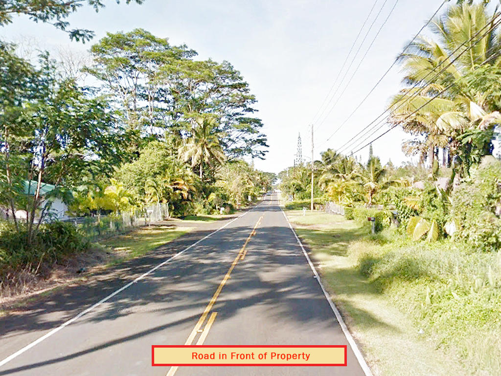 Residential Lot in a Beautiful Tropical Subdivision - Image 6
