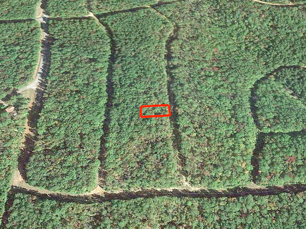 Residential Lot North of Greers Ferry Lake - Image 2