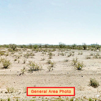 Spacious Desert Land with Plenty of Privacy - Image 1