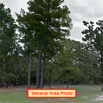 More than a Quarter Acre in Amazing Texas Landscape - Image 1