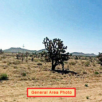 Stunning 1 Acre Land Near Joshua Tree Forest - Image 1