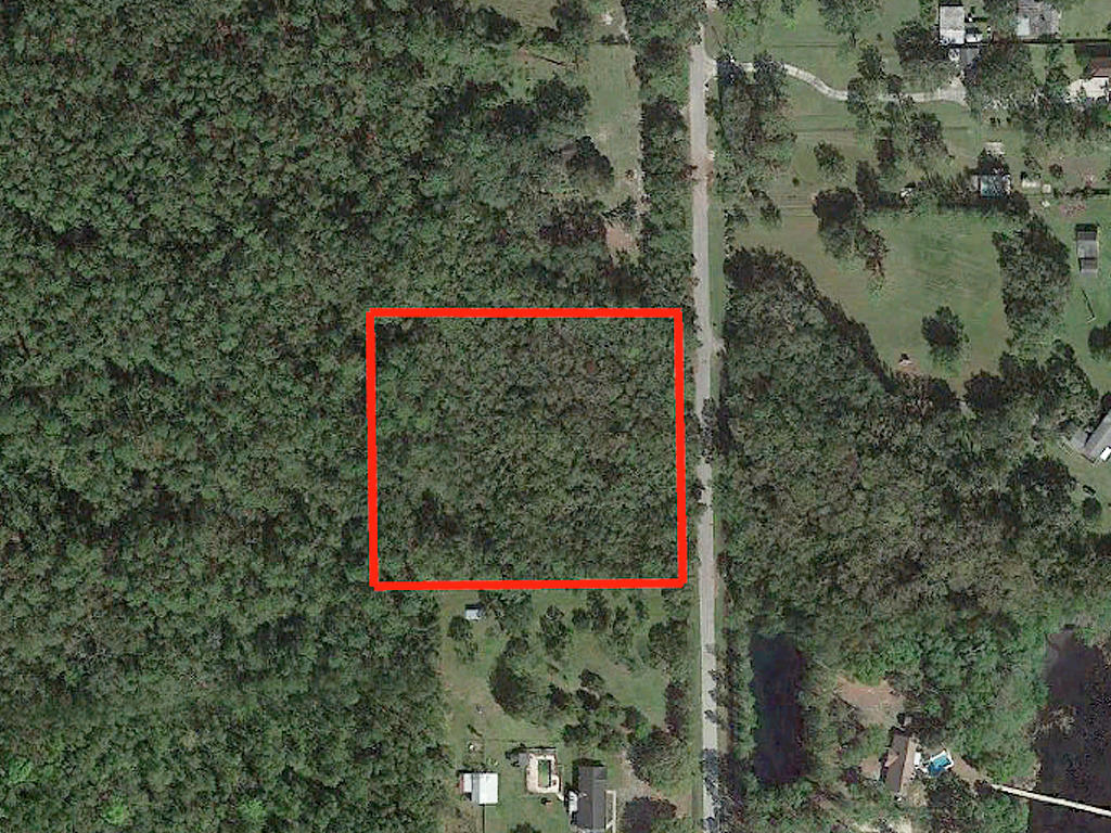 3 Acres in Sunshine State Steps From the Riverbank - Image 2