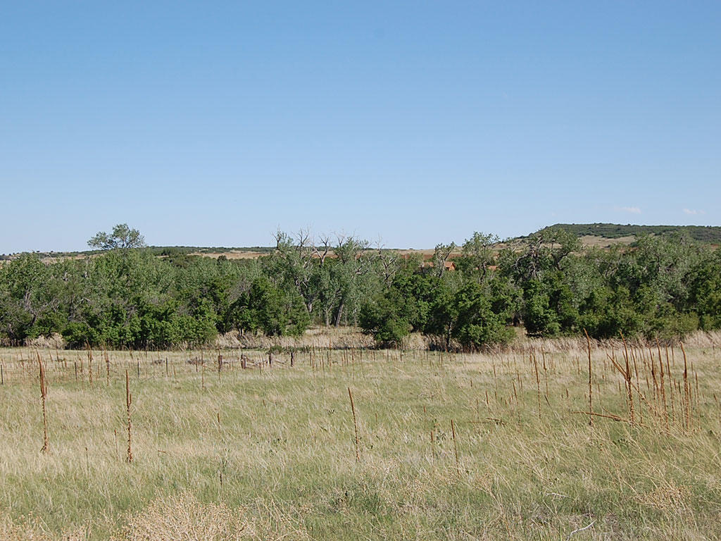Charming Land Near Colorado City - Image 5