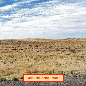 Ideal Land Investment on Cleared 1 Acre Lot - Image 1