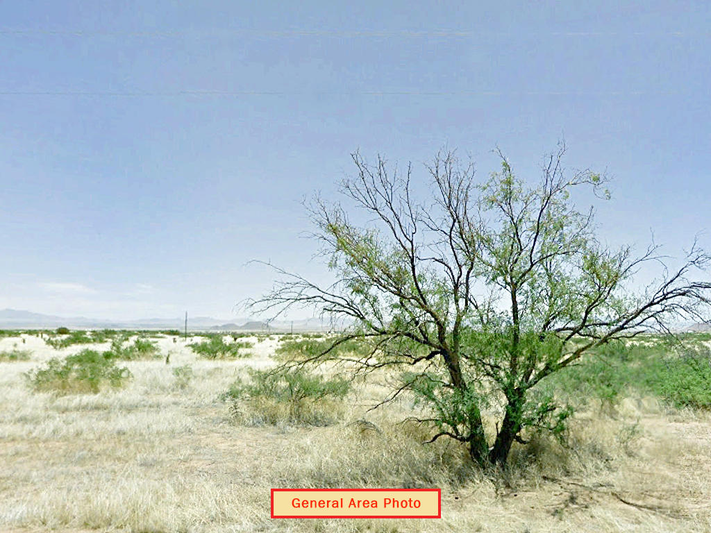 Spacious 1 Acre of Prime Desert Land - Image 4