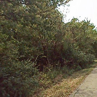 Prime Land Opportunity in Northern Kentucky - Image 1