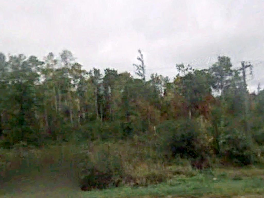 Large Half Acre Lot Near Several Lakes - Image 4