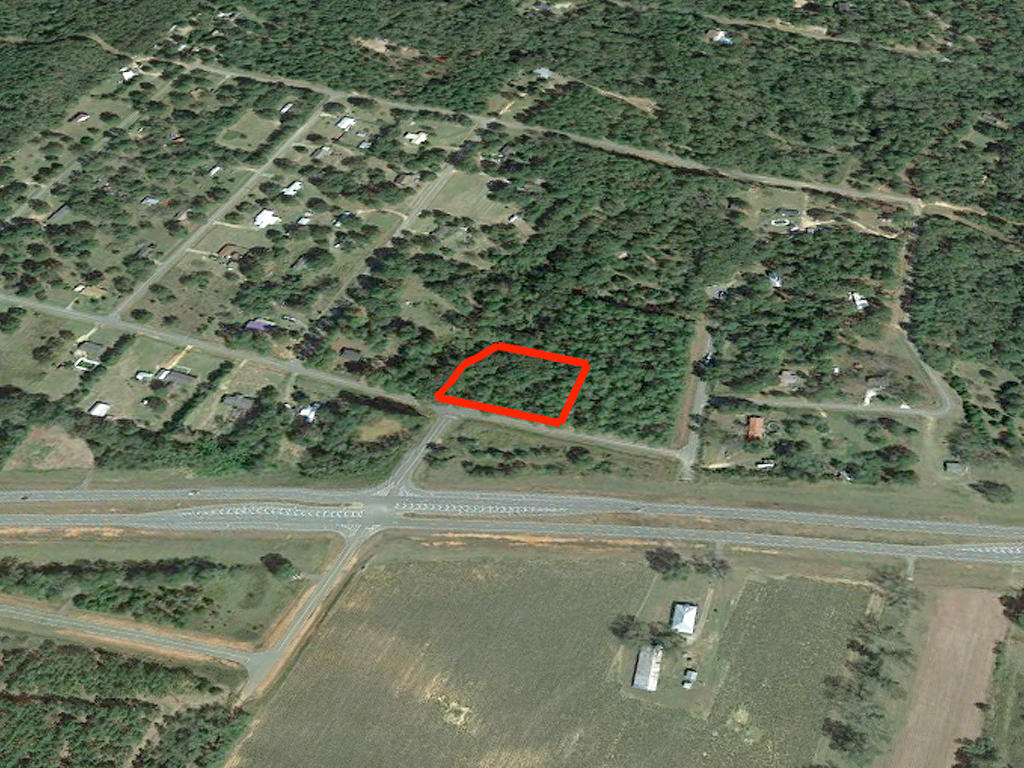 Large Treed Lot in Americus - Image 3