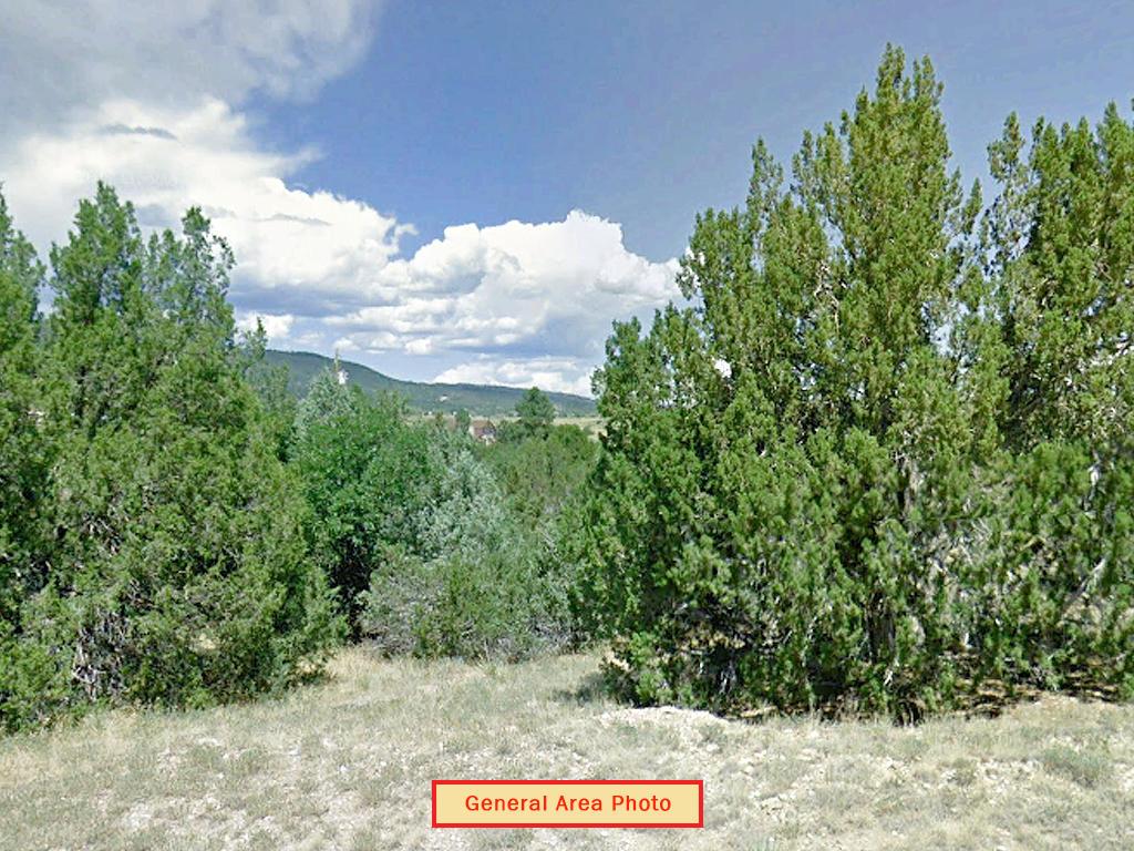 Quarter Acre Lot Just Outside Colorado City - Image 3