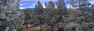 Build Your Dream Home Beneath Majestic Mount Shasta
