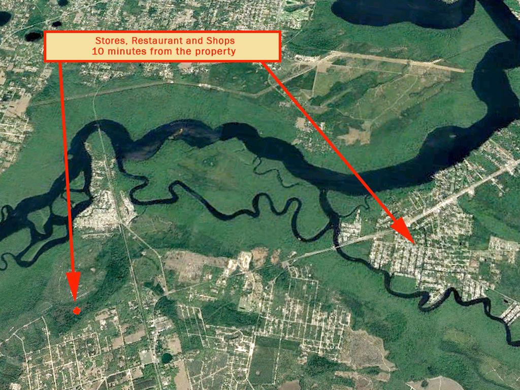 1 Acre Satsuma Undeveloped Road Access Lot - Image 5