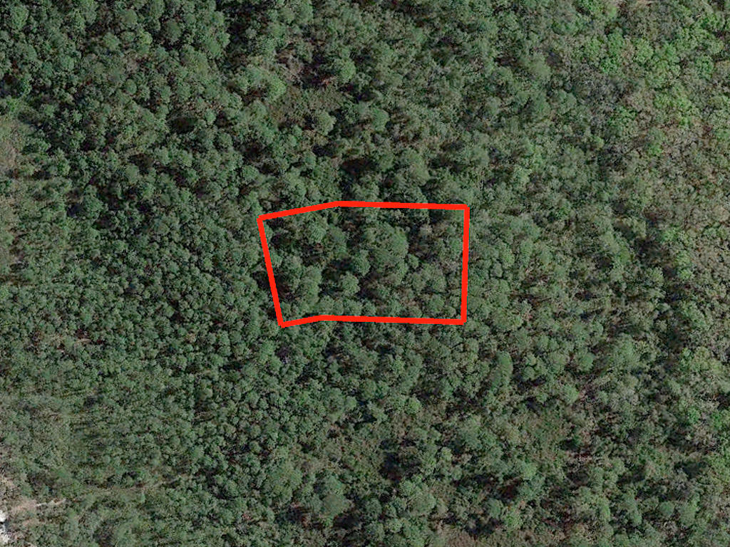 1.63 Acre Undeveloped Road Access Lot - Image 1