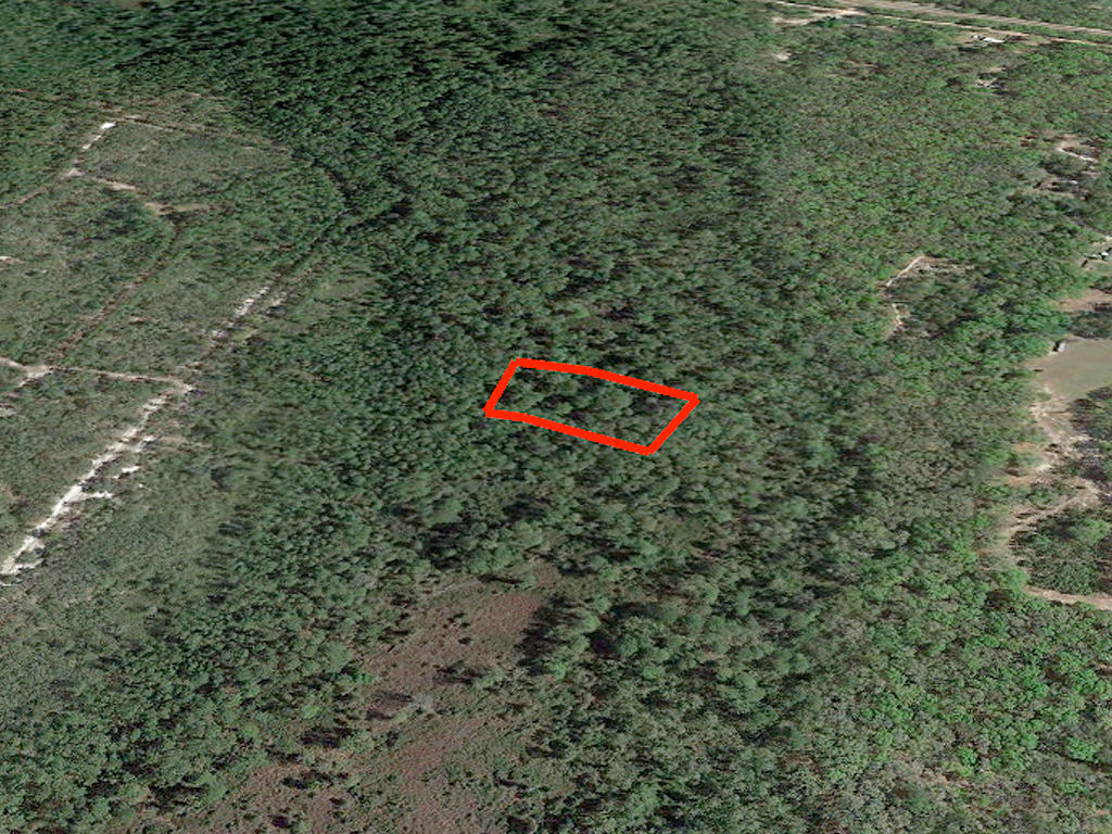 1.63 Acre Undeveloped Road Access Lot - Image 2