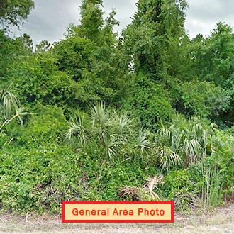1.63 Acre Undeveloped Road Access Lot - Image 0
