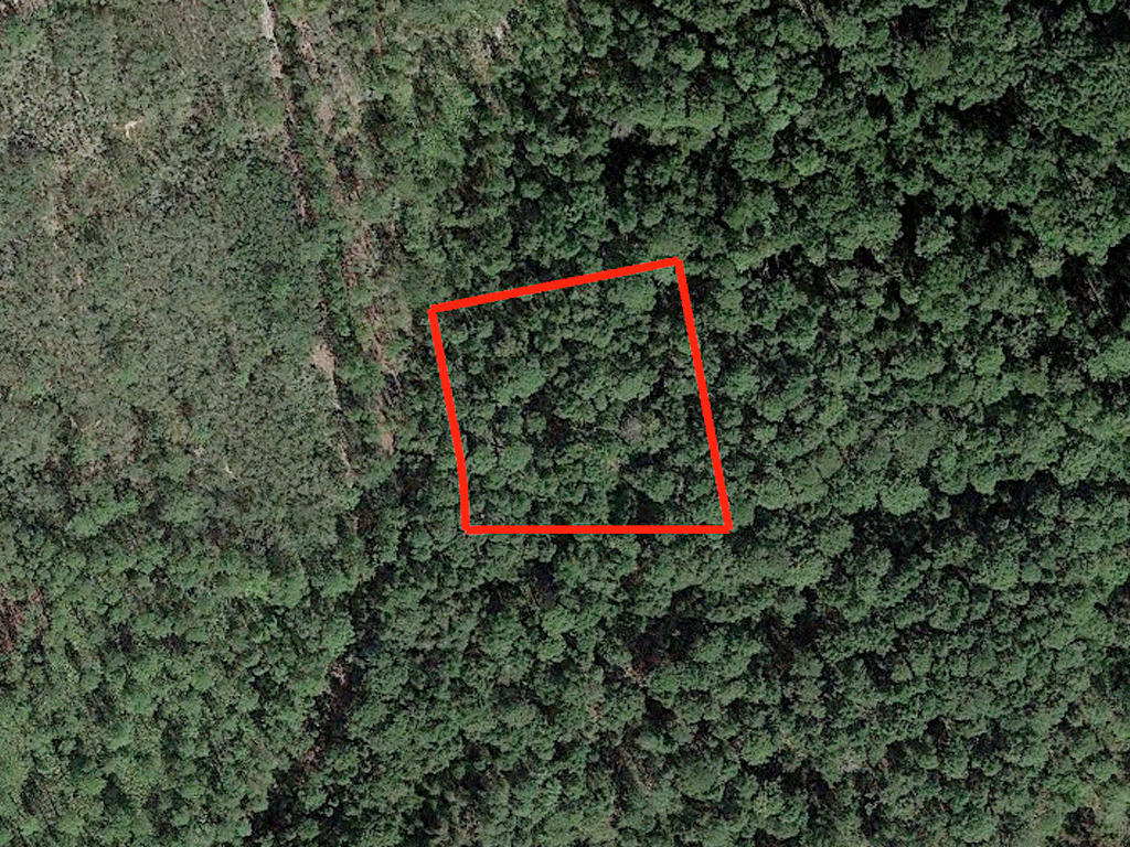 Satsuma Residential Lot with Dirt Road Access - Image 1
