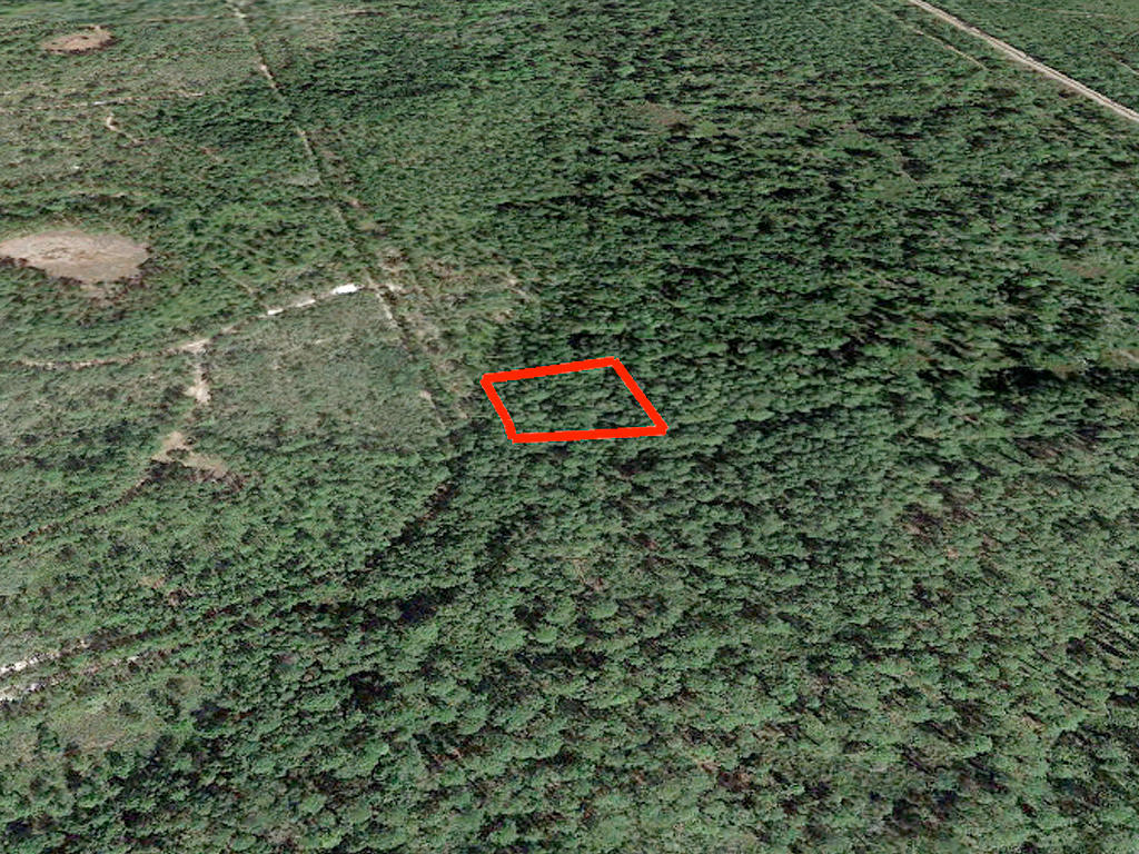 Satsuma Residential Lot with Dirt Road Access - Image 2