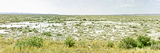 Forty Acre Property in Central Wyoming