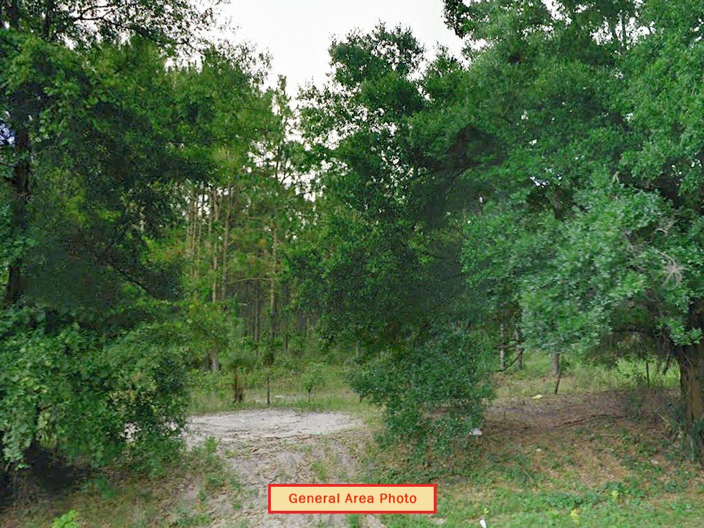 1 Acre St. Johns Riverside Estates Property - Image 3