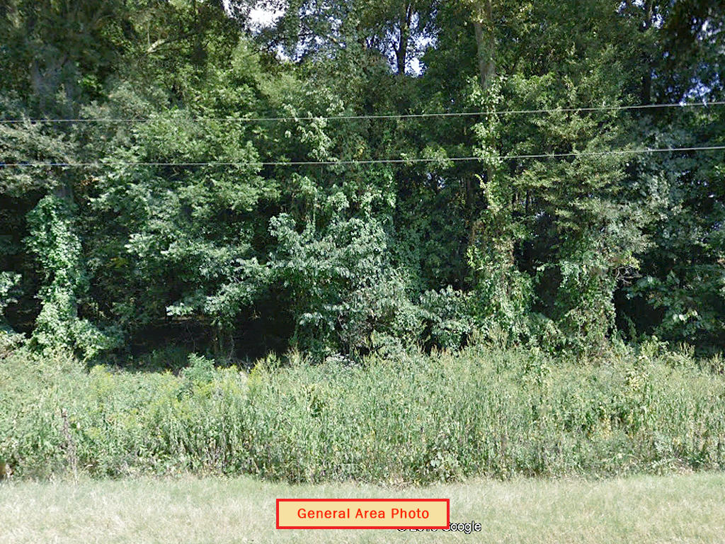 Nearly Half Acre Monroe County Farmland Tract - Image 3
