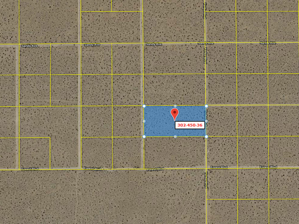 5 Acre Desert Rural Paradise Tract - Image 3