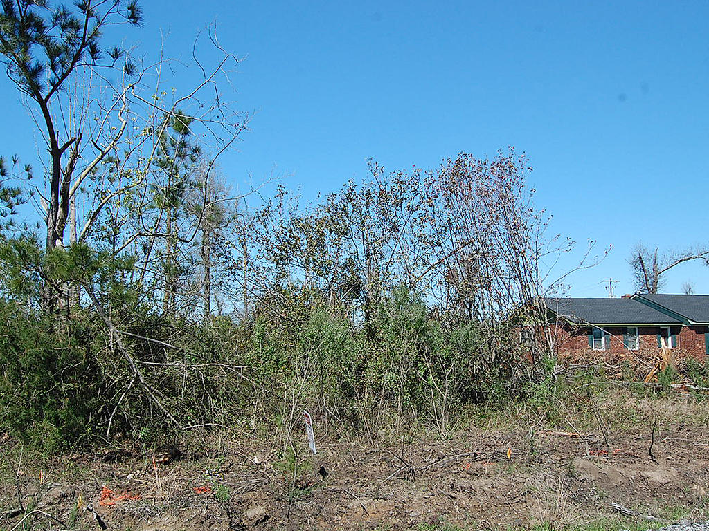 Spacious Land in Historic Community - Image 4
