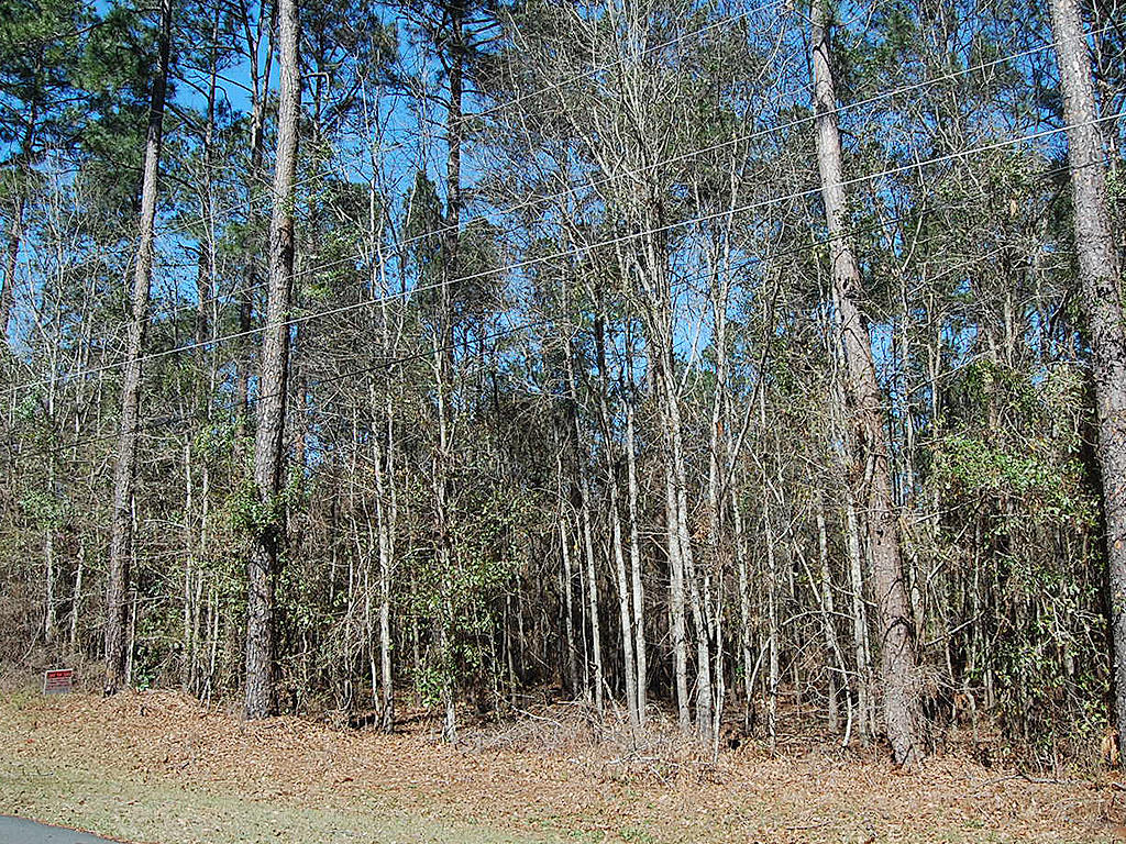 Attractive Two Acre Lot Near Statham Lake - Image 4