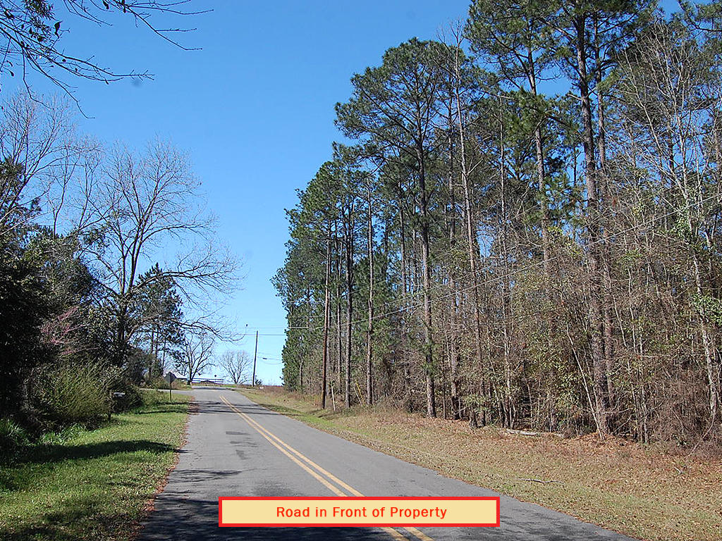 Attractive Two Acre Lot Near Statham Lake - Image 5