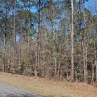 Attractive Two Acre Lot Near Statham Lake - Image 1