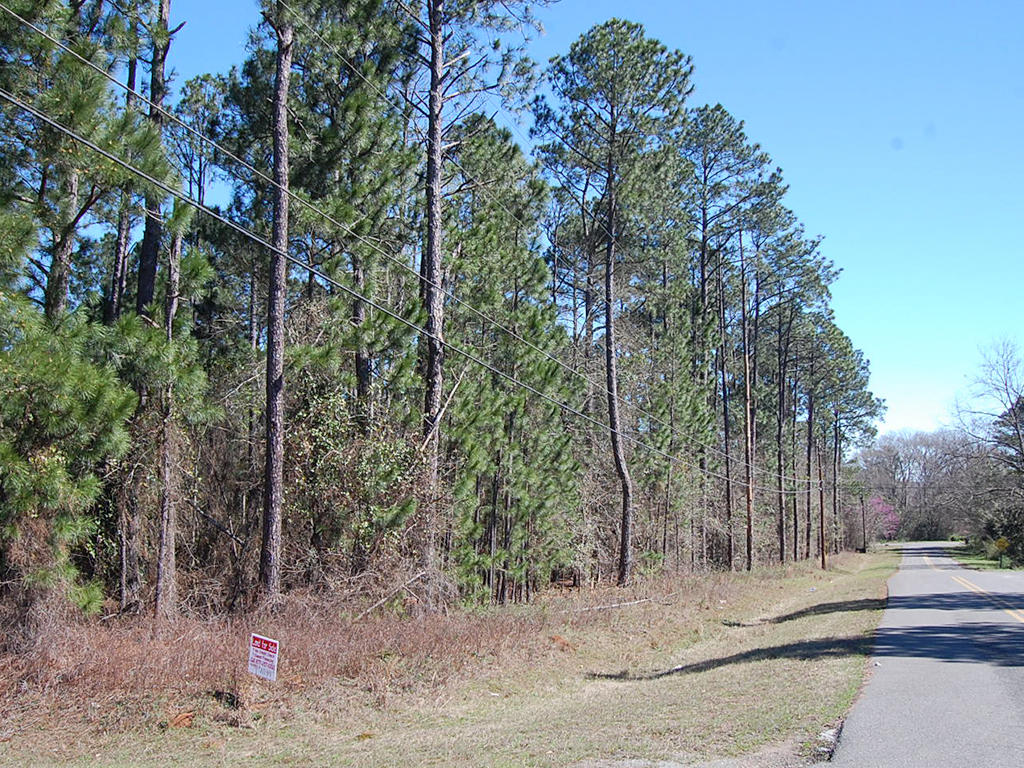 Build Your Dream Home on 1 Acre Historic Land - Image 3