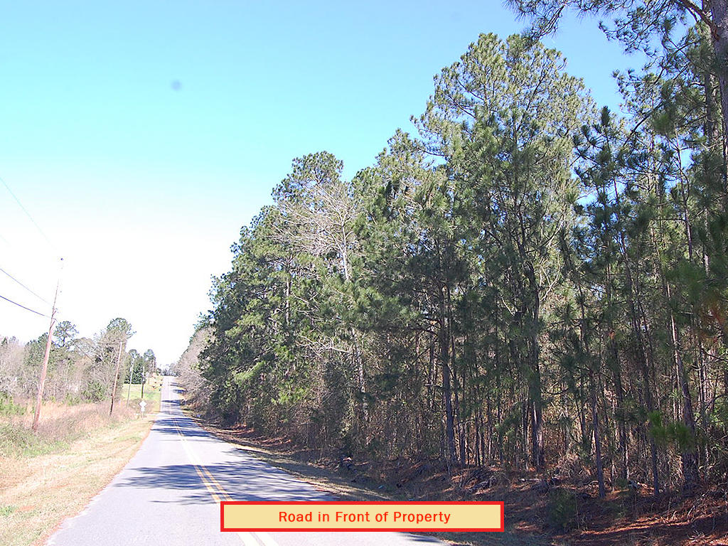 Build Your Dream Home on 1 Acre Historic Land - Image 4