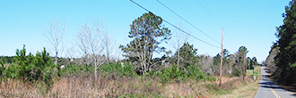 Build Your Dream Home on 1 Acre Historic Land