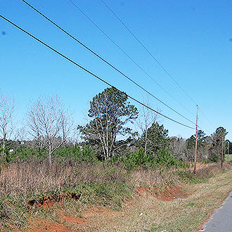 Build Your Dream Home on 1 Acre Historic Land - Image 0