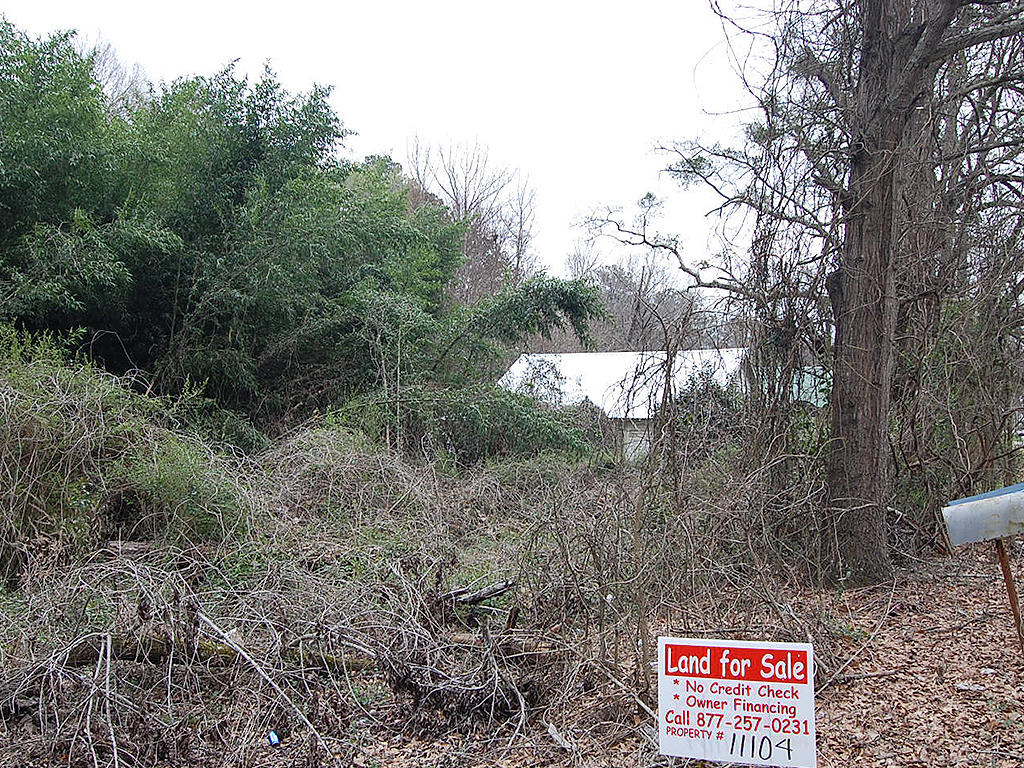 Highly Valued Lot in NW Georgia - Image 4