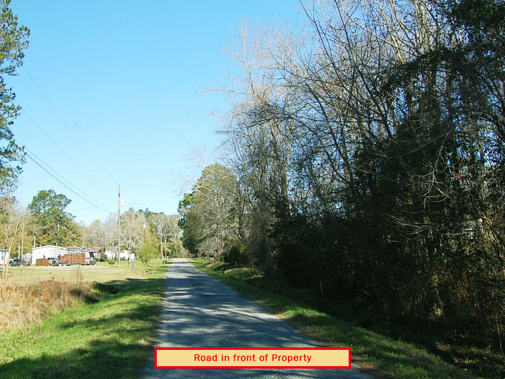 Near Half Acre in Vibrant Southern Town - Image 5