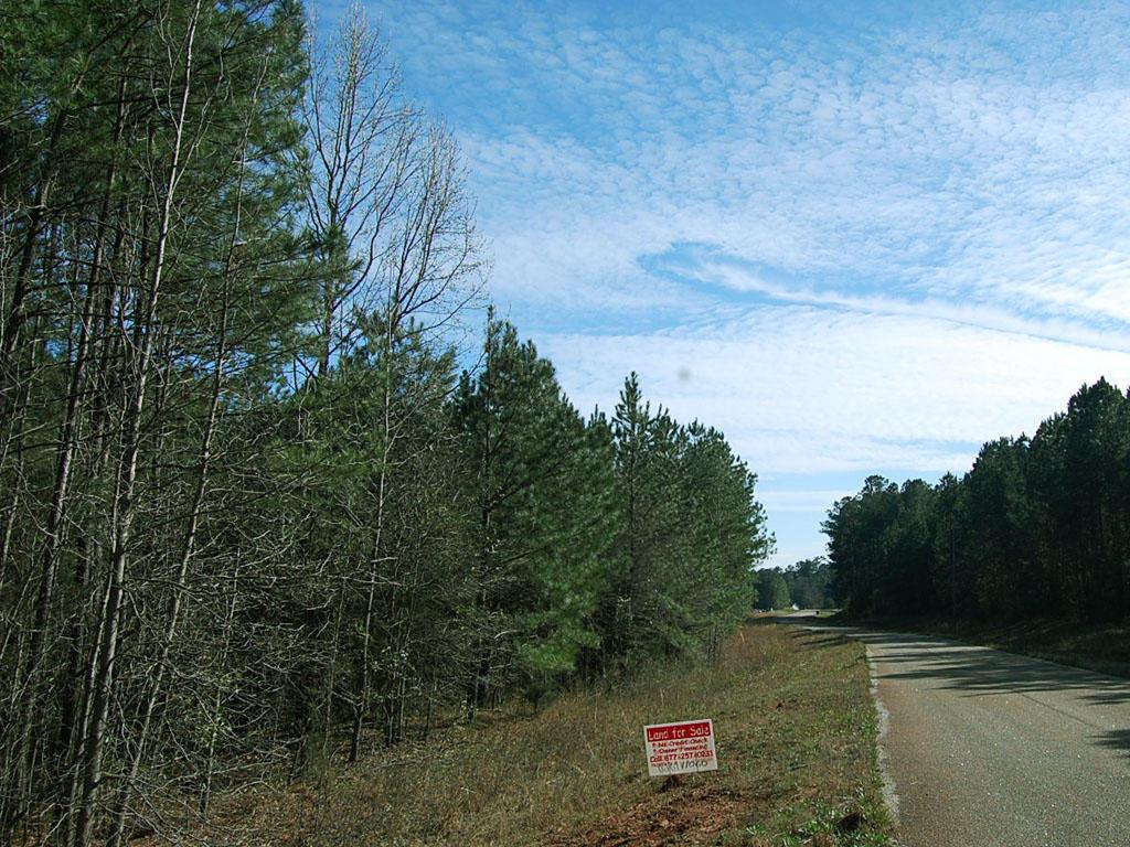 Gorgeous 2 Acres Outside of Woodbury - Image 3