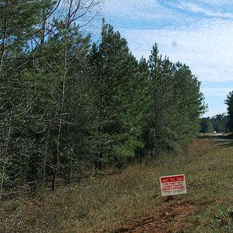 Gorgeous 2 Acres Outside of Woodbury - Image 0
