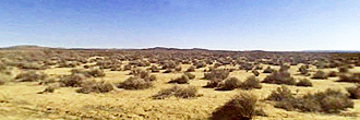 4 Beautiful Acres of Desert Land