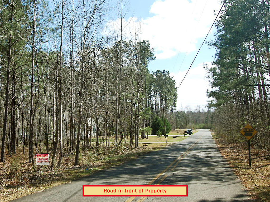 Charming Half Acre Treed Southern Land - Image 3