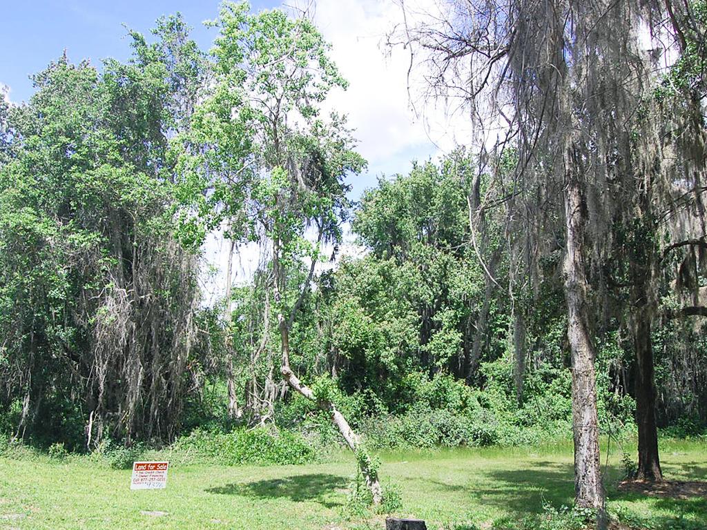 Crescent Lake Florida Lakefront Property - Image 4