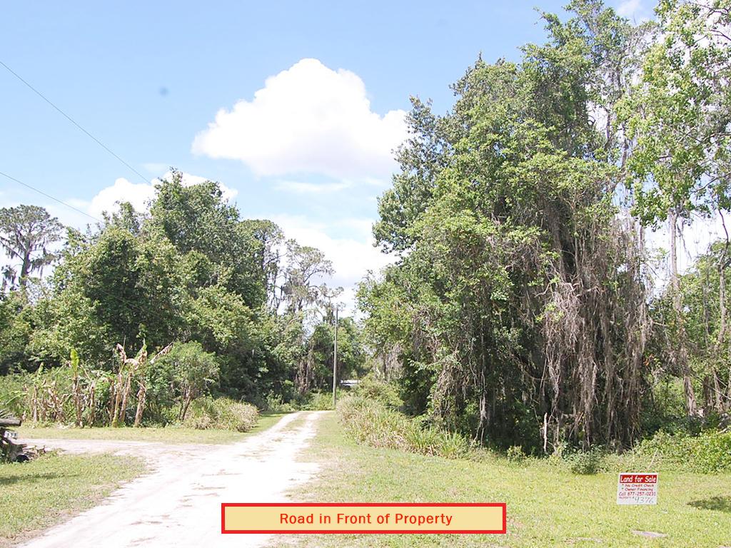 Crescent Lake Florida Lakefront Property - Image 7
