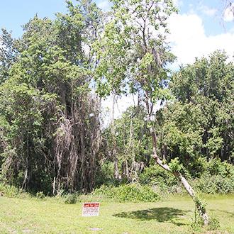 Crescent Lake Florida Lakefront Property - Image 1