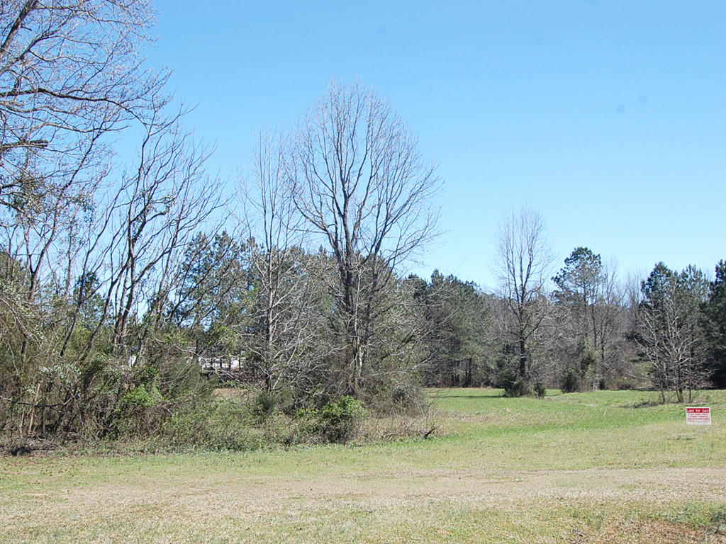 Appealing Georgia Land in Family Friendly Community - Image 4