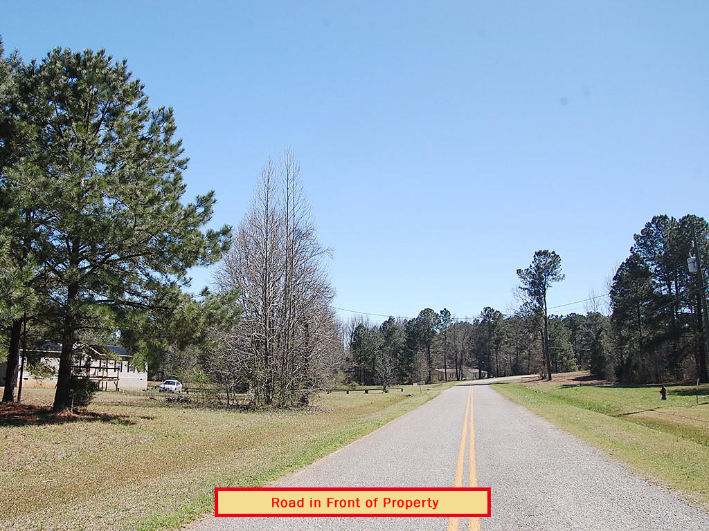 Nearly 3 Quarters of an Acre in Beautiful Peach State - Image 3