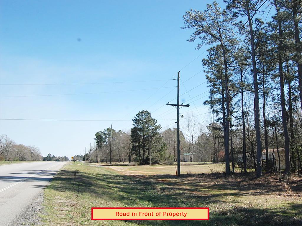 Half Acre Peach Outside Augusta Georgia - Image 3
