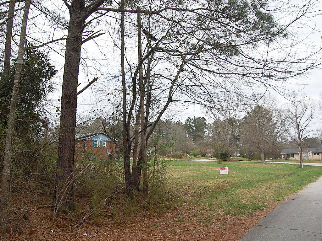 Nearly a half acre in West Newnan - Image 4