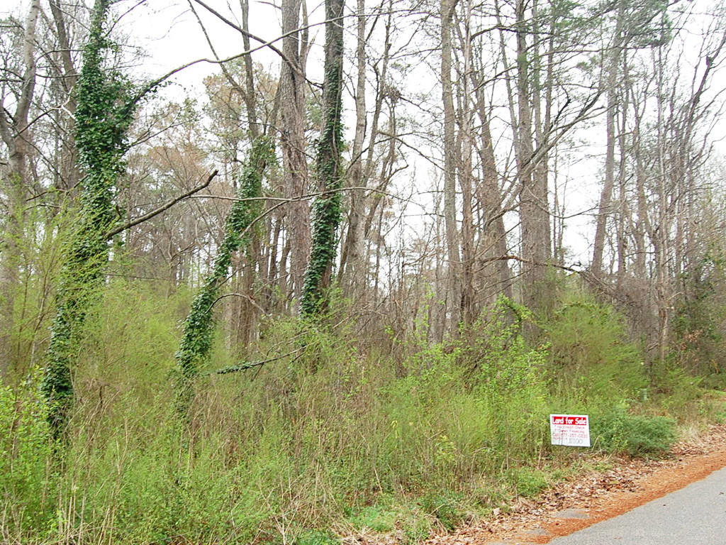 Nearly an acre in Peachtree City - Image 4