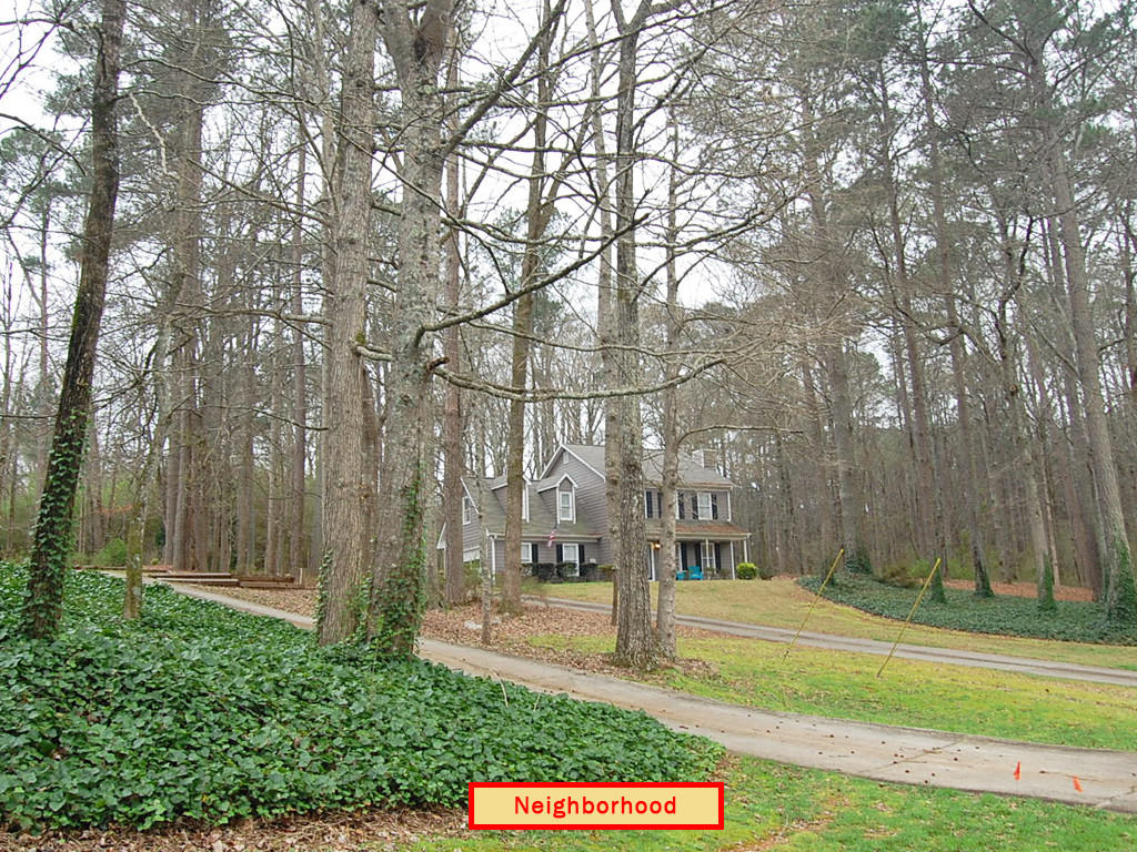 Nearly an acre in Peachtree City - Image 5