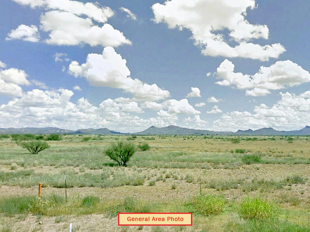 Beautifully Rare Half Acre in Desert Paradise - Image 3