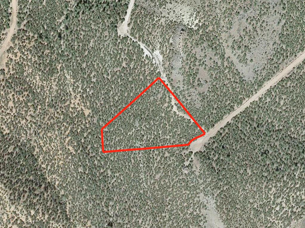 5 Acres in Costilla County Colorado - Image 2