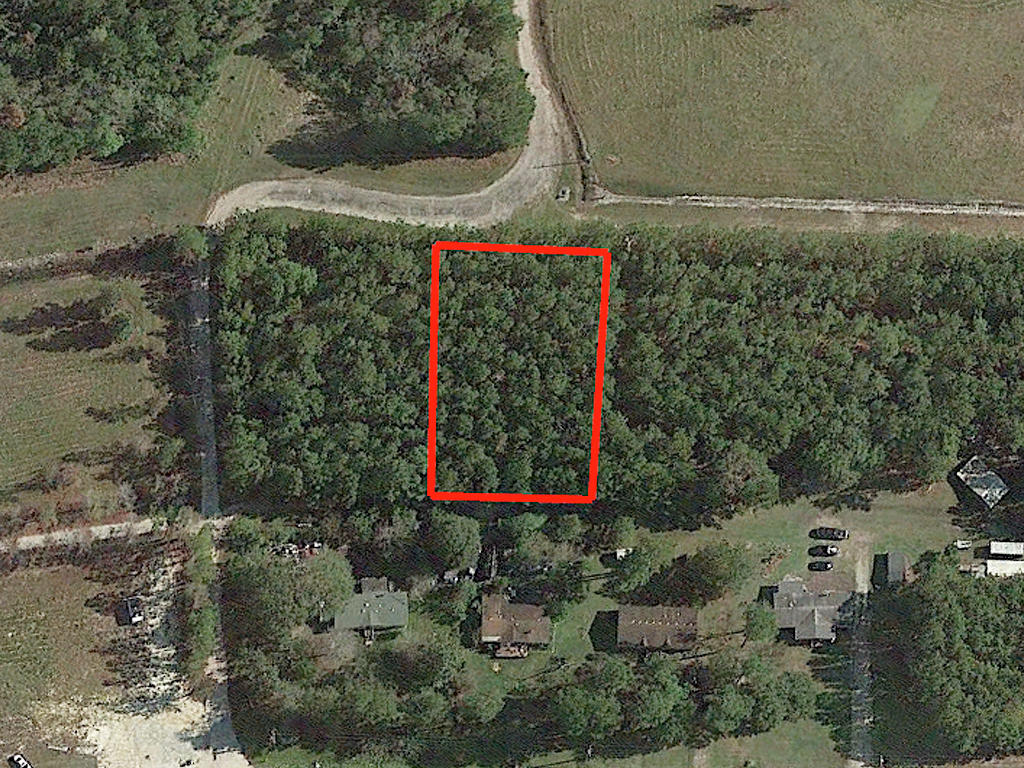 Lovely Private Half Acre Lot Near Rocky Point - Image 2